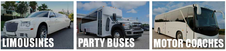 party bus limo service Rome