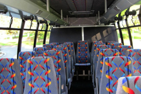 20 person mini bus rental Madisonville